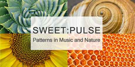 SWEET: Pulse tickets