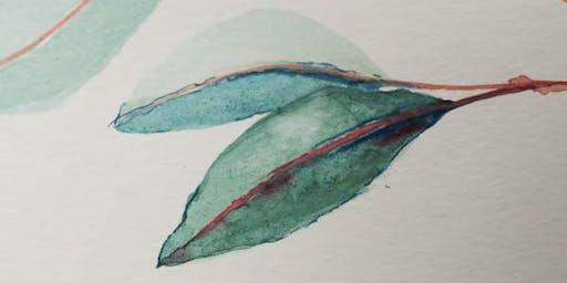 Watercolour for Beginners - Eucalypt leaves