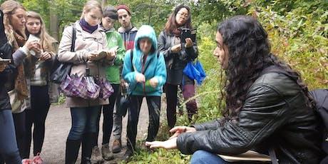 Wild medicinal & edible plant walk - Evergreen Brickworks tickets