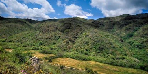 Take A Hike: San Pedro Valley Park