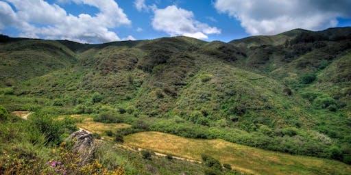 Take A Hike: San Pedro Valley Park Weekday!