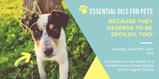 Essential Oils + Pets: A DIY Workshop