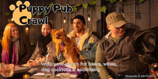 Puppy Pub Crawl