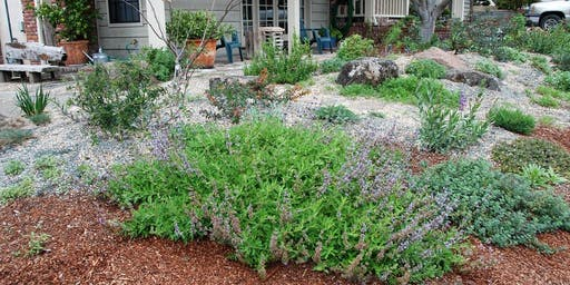 Creating a Natural, Wildlife Friendly and Fire Safe Yard with Lee Stevenson
