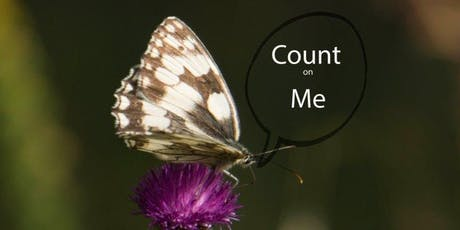 Butterfly Conservation Big Butterfly Count at Kingston Uni - Nursery (19 July - 11 Aug) tickets