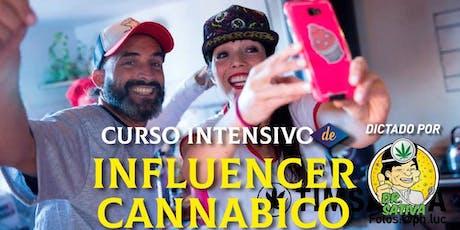 CURSO INTENSIVO INFLUENCER CANNABICO By Dr Sativa entradas