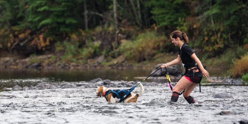 Cani-Raid FouBraque du Parc des Appalaches 2019 - VOLET CANICROSS