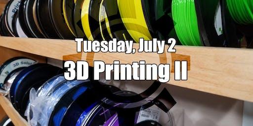 Beginner's 3D Printing II