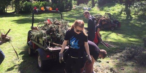 Startups Give Back: Golden Gate Park Cleanup