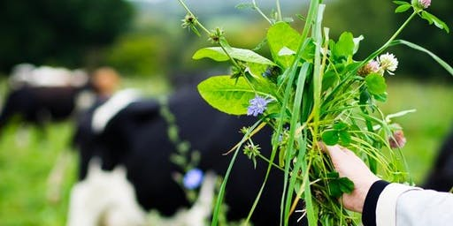 Circular Brighton & Hove -Circular thinking on an organic dairy farm