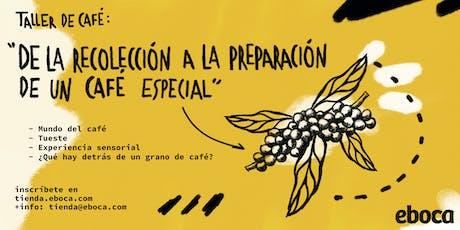 Taller: de la recolección a la preparación de un café especial entradas