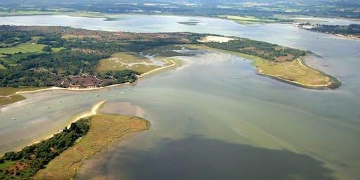 RSPB Arne volunteer walk - Gold Point Heath & saline lagoon