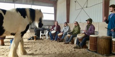 Drumming with Horses