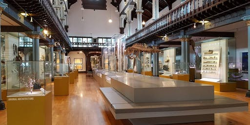 ASD Family Session at The Hunterian Museum