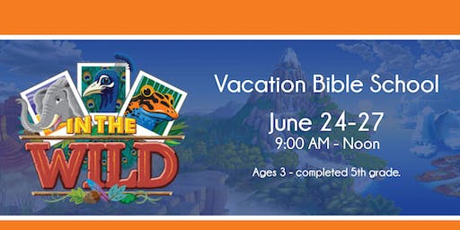 Vacation Bible School: IN THE WILD!