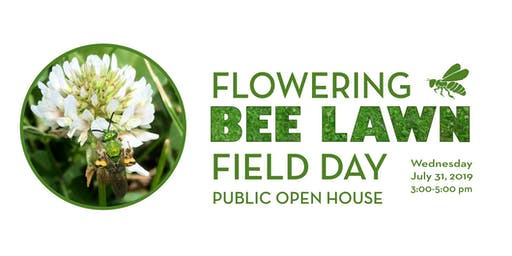 Flowering Bee Lawns Open House for the Public