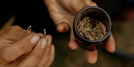Urban Herbal – Foraging for Herbal Medicine in the City - Mile End tickets