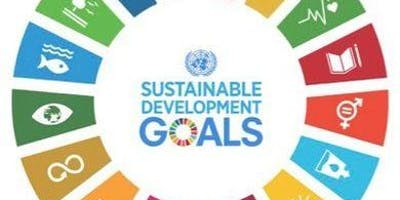 Our Place: How do we achieve the global UN Sustainable Development Goals?
