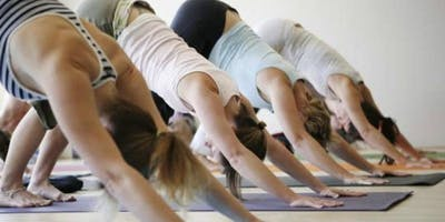 Ashtanga Yoga Led Primary Class