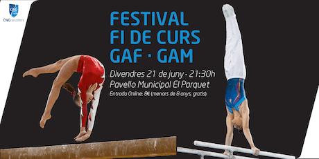 Festival Final de curs de GAM i GAF 2019 entradas
