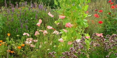 Sustainable, Earth-Friendly Gardening