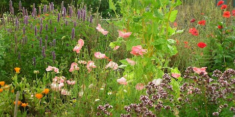 Sustainable, Earth-Friendly Gardening tickets