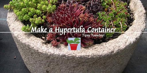 Make Hypertufa Containers