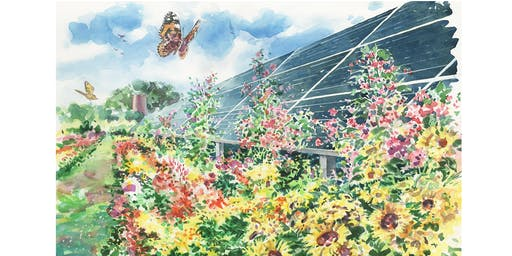 Community Solar Talk in Niwot