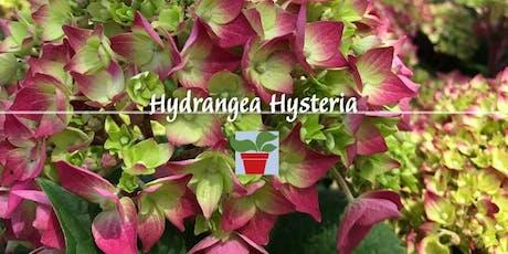Hydrangea Hysteria tickets