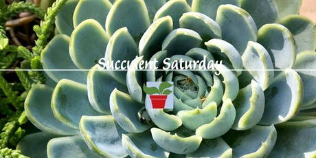 Succulent Saturday tickets