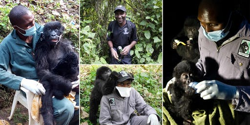 Journey into the Virunga Volcanoes with David E. Shaw & the Gorilla Doctors