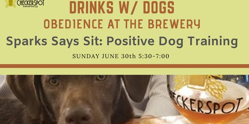 Drinks with Dogs- Obedience at the Brewery