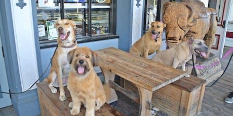 Pet Pros Free Training Workshop tickets