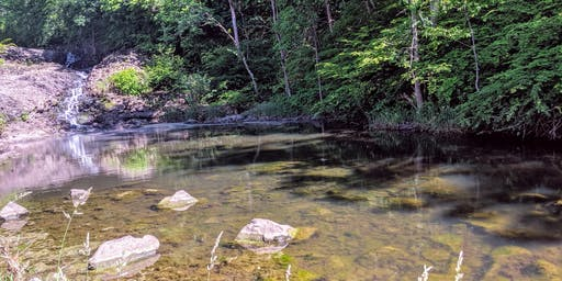 Nature Adventurers- July 14, 2019 Family Nature Club