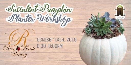 Succulent Pumpkin Workshop at Rose Bank Winery