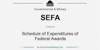 Basic SEFA development workshops