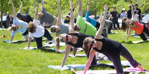 Free Yoga at Tower Grove Pride