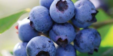 Meet the Farmer with Farmer Lis: Backyard Berries tickets