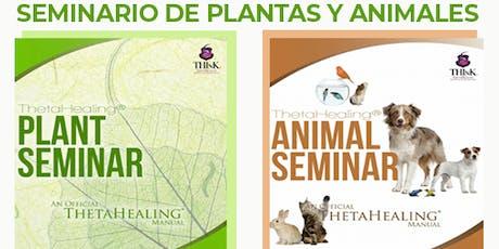 Seminario de Plantas y Animales billets