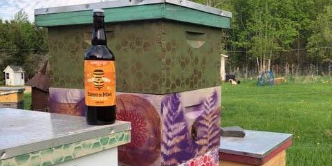 Paint a Bee Hive