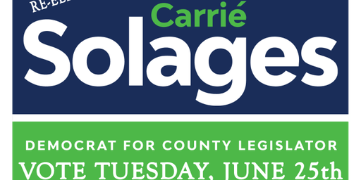 VALLEYSTREAM: MEET & GREET WITH OUR LOCAL LEGISLATOR CARRIE SOLAGES
