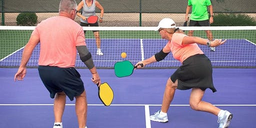 Pickleball Honey Brook!