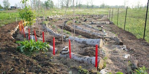 Minjimendan - Sustainable Habitat Design