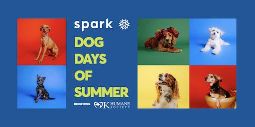 Dog Days of Summer at Spark Creative