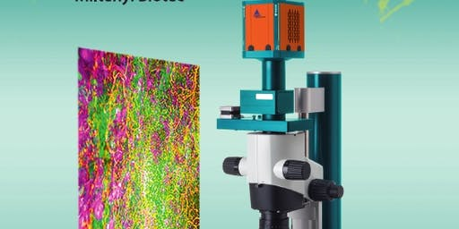 SIgN-Miltenyi Biotec Joint Ultra-Microscope workshop 2019
