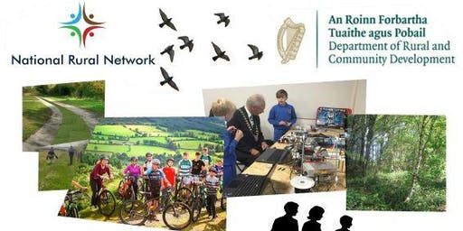 Smart Villages and Rural Towns in Ireland: Revitalising Rural Areas through Community-Led Innovation