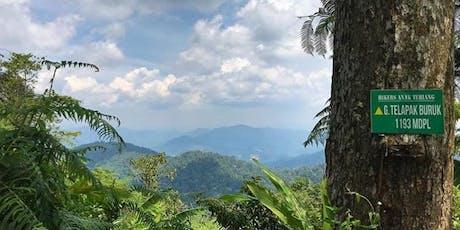 Gunung Berembun + Telapak Buruk Hike tickets