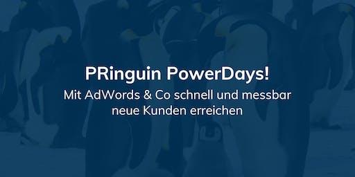 PRinguin PowerDay - Suchmaschinenwerbung (SEA)