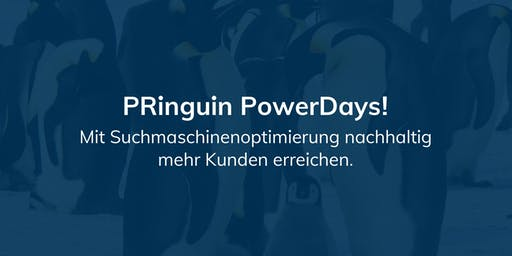 PRinguin PowerDay - Suchmaschinenoptimierung (SEO)