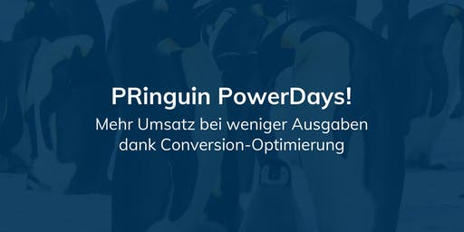 PRinguin PowerDay - Conversion-Optimierung